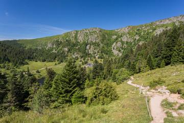 Sentier et falaises en montagne