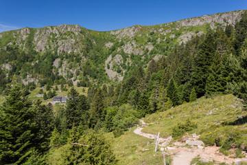 Sentier vers les falaises
