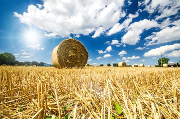 Erntezeit: Pfälzer Landschaft mi Stoppelfeld und Strohballen :)