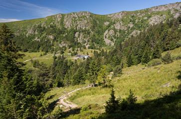 Chemin et falaises en montagne