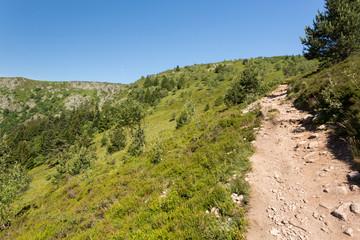 Sentier en montée vers le sommet