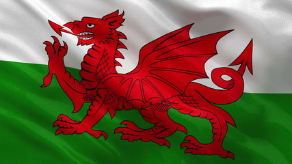 Flag of Wales waving in the wind - seamless loop