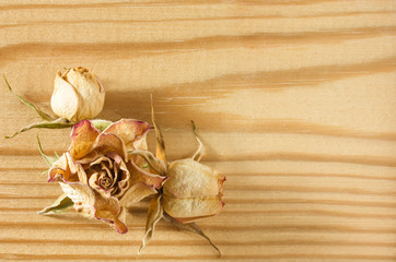 Dry rose flowers on rough wooden table