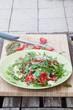Fresh salad of arugula