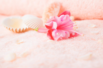 travel concept with delicate pink flower fuchsia, seashells on t