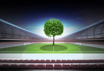 leafy tree in midfield of magic football stadium