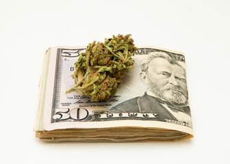 Marijuana and Dollar notes
