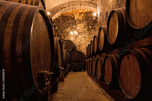 Wooden barrels with wine in a wine vault, Italy © Shchipkova Elena