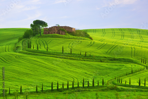 Wavy hills, cypresses and the destroyed estate , Tuscany, Italy © Shchipkova Elena