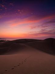 Morgendämmerung in den Dünen von Maspalomas