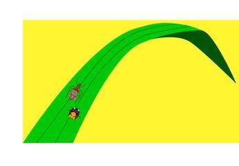 ant_ladybug