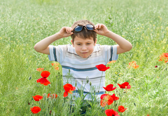 boy on red flower meadow