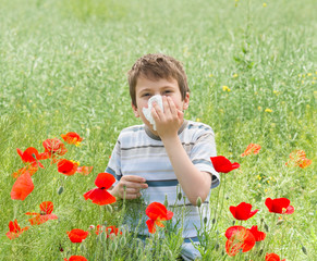 allergy boy with handkerchief on red flower field