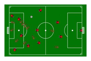 ant_ladybug_football