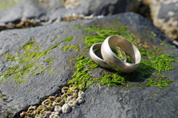 Wedding rings on old rock with seaweed by the beach