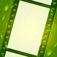 Copyspace Green Indicates Negative Film And Backdrop