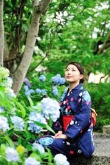 紫陽花の咲く庭園に座って落ち着いている浴衣の美しい日本人女性