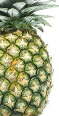 Pineapple (detail)