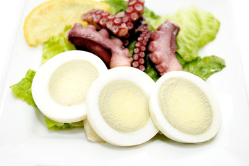 Sliced Hard Boiled Egg with Octopus