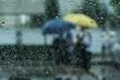 Raining and umbrella - 66827772