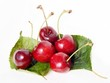 sweet cherries close up