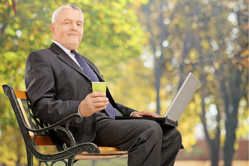 Mature businessman working on a laptop