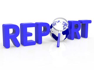 Magnifier Report Shows Document Data And Search