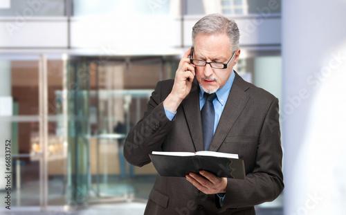 Senior businessman at the phone