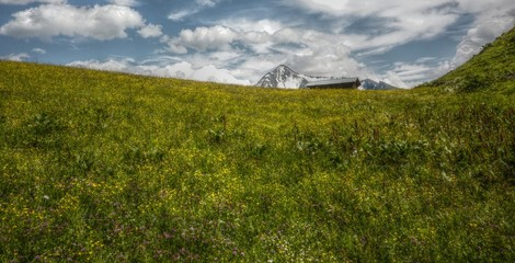 Bergwiese mit Almhütte Panorama in HDR