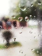 Tras la ventana