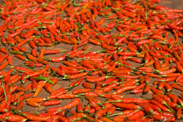 Background of closeup red hot peppers