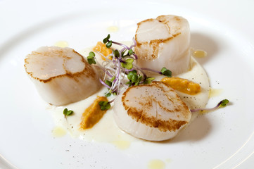 Seared scallops served on a bed of creamed potato