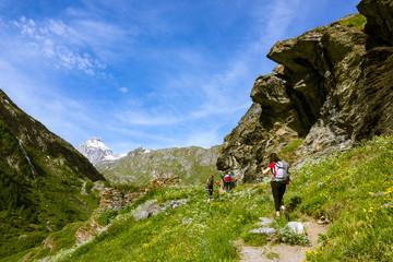 Amici fanno trekking in montagna