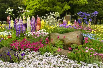 Buntes Blumenbeet im Garten