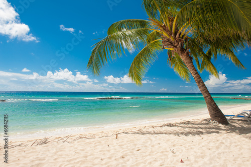 canvas print picture Barbados