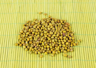 mung beans on green background
