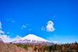 西臼塚駐車場からの紅葉と富士山