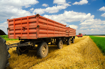 Harvester combine and tractor trailers during wheat harvest