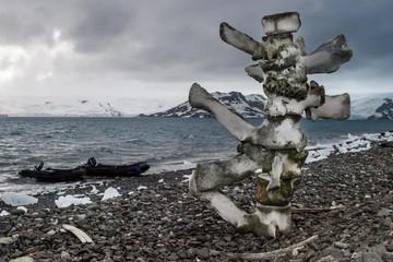 Antarctic Whale Bones
