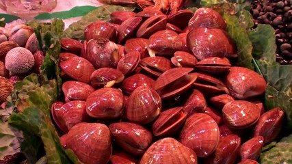 Fresh clams at the La Boqueria food market. Barcelona, Spain.