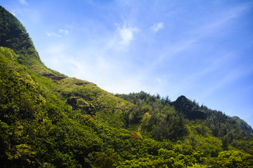 Tropical ridgeline of the mountains of Kauau