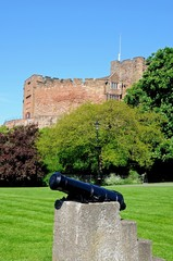 Tamworth castle and canon © Arena Photo UK