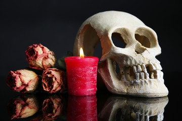 Composition with skull,  candle and dried rose isolated on