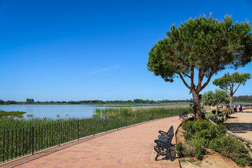 Quai Réserve Parc national de Doñana Donana