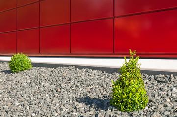 Zierkies, Gartenbau, Vorgarten, modern