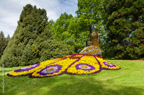 Leinwandbild Motiv Blumeninsel Mainau