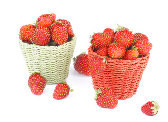 Forest Strawberries