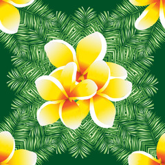 Plumeria seamless vector pattern palm leaves.