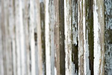 Holzzaun Hintergrund