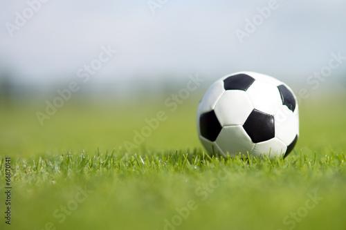 Leinwandbild Motiv Fußball auf dem Rasen